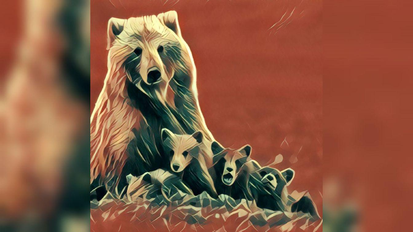 fabelname des bären